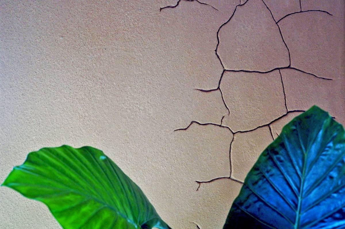Terragena - Rispetto per l'ambiente, amore per la tradizione